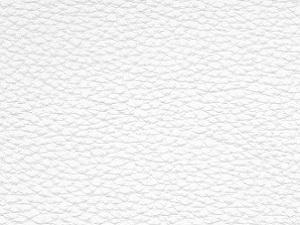 CN 01 (Branco)